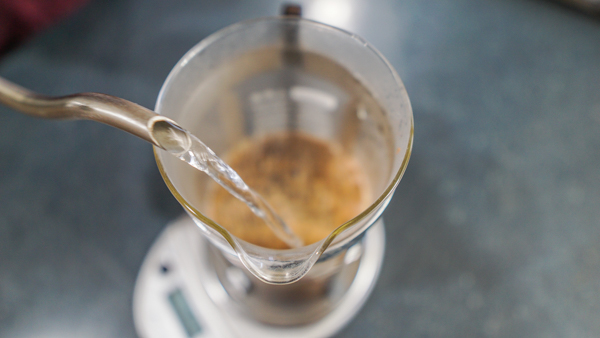 Pouring water into your French Press